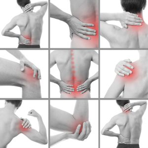 Chiropractor in Denver CO